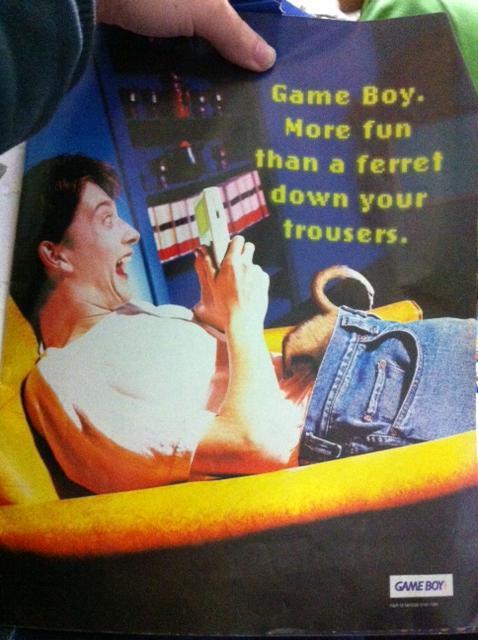 gameboy_ferret